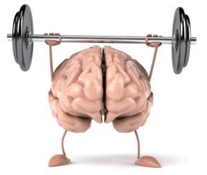 brain health fitness